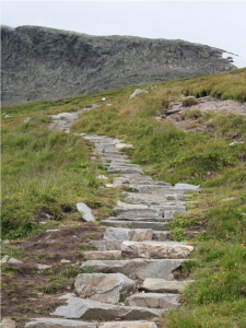 Mountain trail in Norway